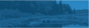 homepage banner blue
